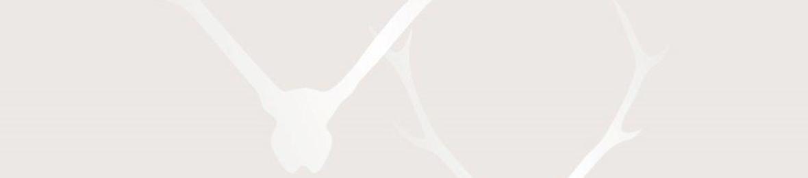 """www.lizalomi.de, Elisabeth Auer Massagen im Gästehaus """"beim Nuihausa"""" 83242 Reit im Winkl, Cellagon Beraterin, Ferienwohnung Traumblick dolomiten"""
